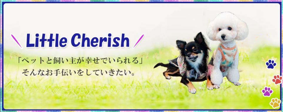 愛媛県松山市にあるペットホテル、訪問ペットシッター、ペット美容、ペット相談、シャンプー・トリミングでおなじみのリトルチェリッシュ